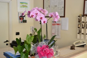 fiori in hotel