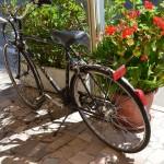 affitto gratuito bici